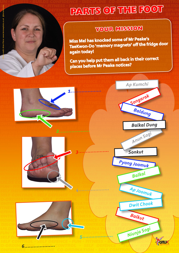 Parts of Foot