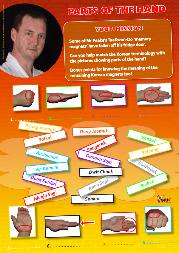 Taekwondo QUIZ Parts of the Hand