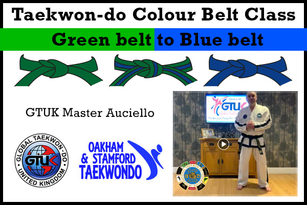 Blue belt Syllabus