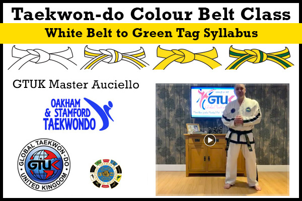 Taekwon-do Colour Belt