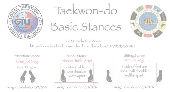 Taekwon-do Basic Stances